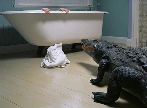 Dangerous Bathroom