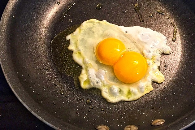 Double Yoke Eggs