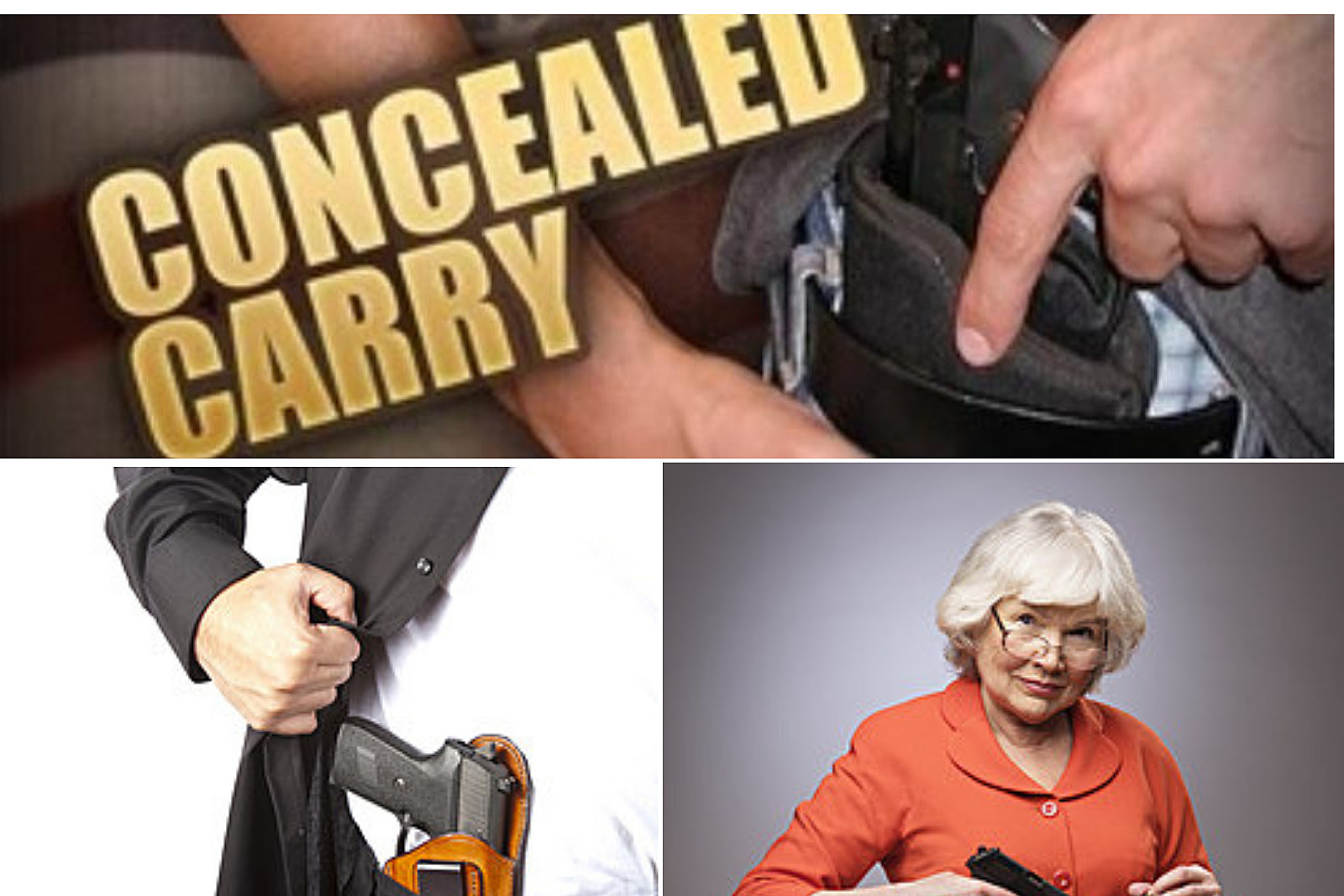South Dakota Concealed Carry Law