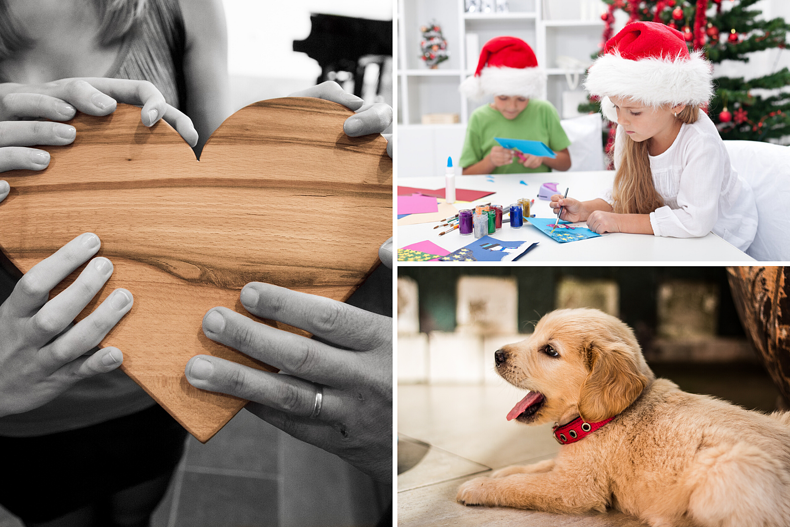 Helping hands, children at Christmas party, puppy